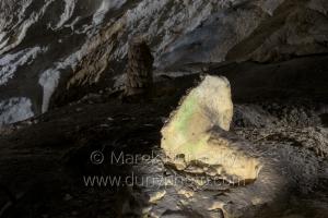 Hríb v Belianskej jaskyni