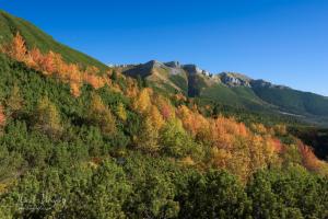 Jeseň pod Belianskymi Tatrami