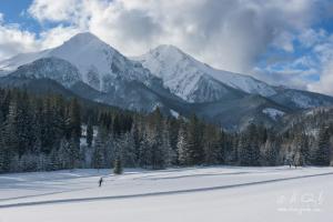 Bežkári pod Belianskymi Tatrami
