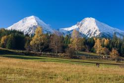 Kravička pod Belianskymi Tatrami