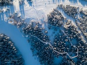 Chodník korunami stromov nad Bachledovov dolinou