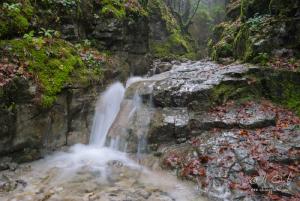 Prítok Bieleho potoka