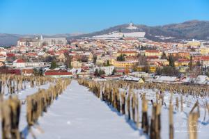 Levoča, v pozadí Mariánska hora