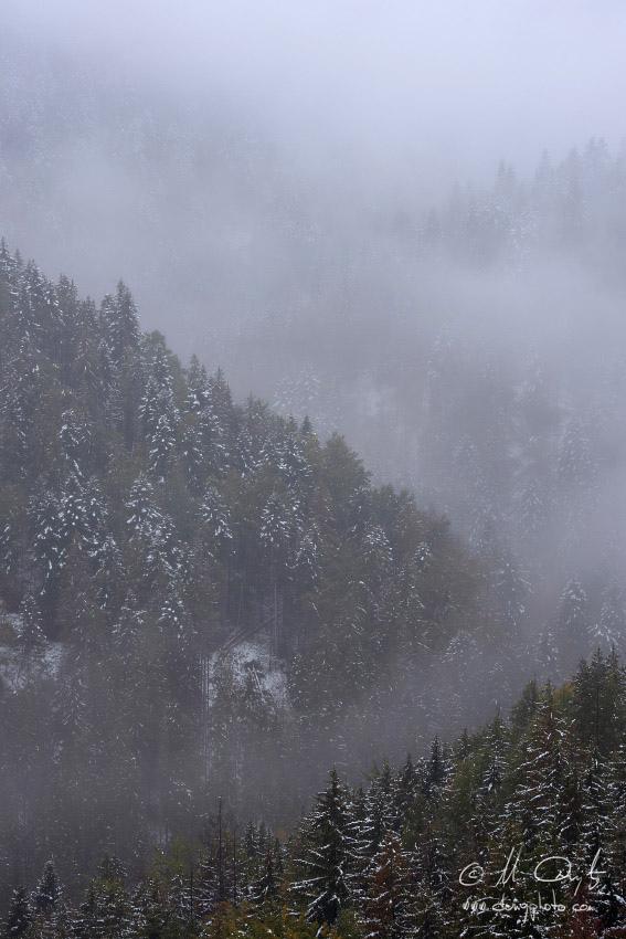 Les v hmle