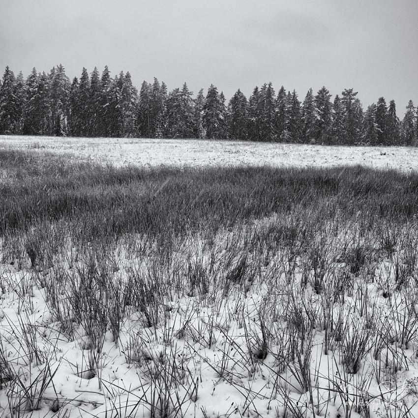 Októbrova snehová nádielka na okraji Slovenského raja