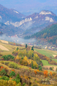 Jeseň na Pieninách, Lesnica
