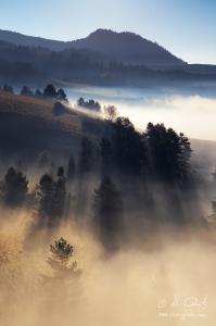 Slnko hmlu krája