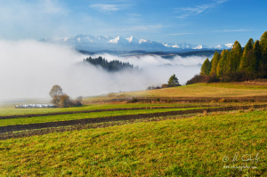 Výhľad na Tatry nad Sromowcami Wyznyma