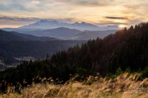 Výhľad na Tatry z Lesníckeho sedla