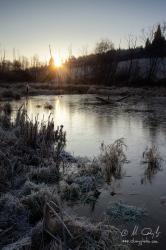V mrazivom ráne na kraji rybníka