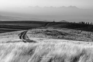 Cesta ku krížu pod Tatrami