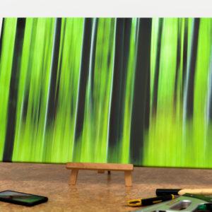 Fotka na plátne 50x75cm, Jarný les - k dispozícii ihneď k odberu