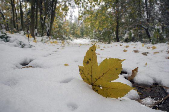 Októbrová snehová nádielka